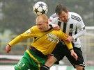 DO BEZPEČÍ. Sokolovský Rostislav Šamánek chce odhlavičkovat míč do bezpečí před...