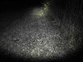 Takhle svítí Coleman, světelný kužel má tvar hrušky.