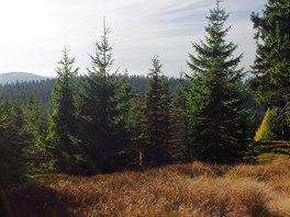 Výhled z Lesného k Dyleni