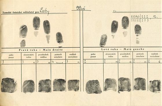 Daktyloskopická karta