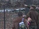 Lesníci se radí, jak v areálu bývalé továrny v Jinonicích nejlépe odchytit...