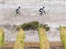 Etapový závod na horských kolech Cape Epic