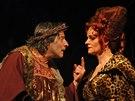 Kostas Zerdaloglu nyn� exceluje v inscenaci Kr�l Lear ve Slezsk�m divadle v...