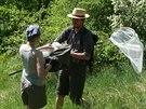 Entomologický průzkum na Velké Homolce