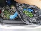Zadržený náklad 4,1 kilogramů marihuany