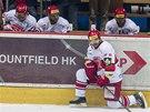 ZKLAMÁNÍ. Hokejisté Hradce Králové právě vypadli z play-off.