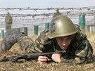 Cvičení ukrajinské armády (29. března 2014)