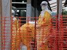 Na rozdíl od řady jiných virů ebola dokáže bez problémů přežít i mimo tělo...
