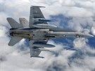 Letoun F-18 Hornet finských vzdušných sil