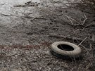 Rybník poblíž Popůvek u Brna. Policii sem přivedlo pátrání po samopalu, kterým...