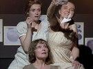 Záběr ze hry Zahrada Jane Austenové