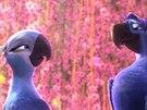 Z animovan�ho filmu Rio 2
