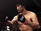 UFC - Bruce Lee