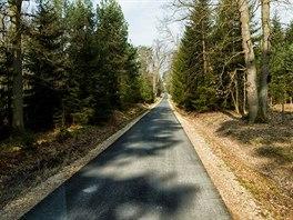 V hradeckých lesích vzniká okruh pro cyklisty a bruslaře dlouhý 16 kilometrů.