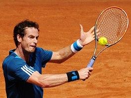 Britský tenista Andy Murray ve čtvrtfinále Davis Cupu proti Itálii.