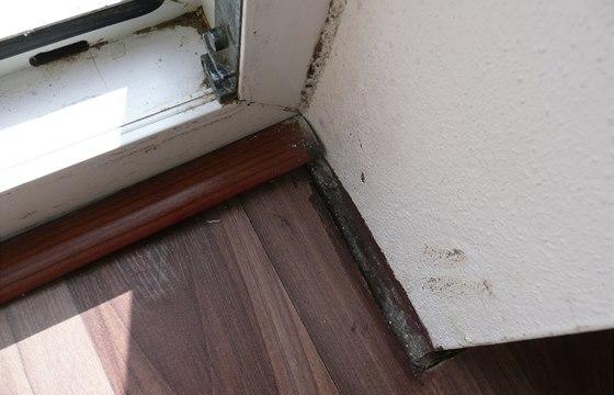 Na ostění dveří na terasu je patrná vlhkost a plísně. Kvůli tomu je poškozená