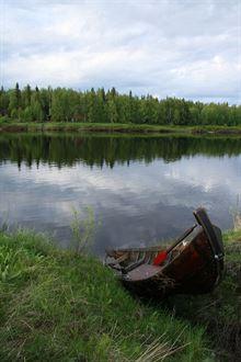 Laponsko je nádherná země, letní pobyt však poněkud kazí miliony a miliony