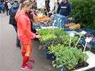 Farmářské trhy  běžcům svědčí.