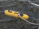 Specialista Ben Pelletier zkouší malou robotickou ponorku Bluefin. Robot se...