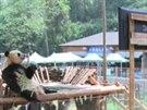 Panda v čínské zoologické zahradě sleduje televizi, aby se necítila tak sama.