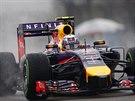 Australský pilot Daniel Ricciardo z Red Bullu v kvalifikaci na Velkou cenu Číny...