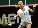 Andrea Hlaváčková se připravuje na semifinále Fed Cupu v Ostravě.