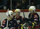 Hokejisté Chomutova slaví gól.
