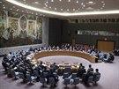 Jednání Rady bezpečnosti OSN o situaci na Ukrajině (14. dubna 2014)