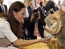 Na Kate v Sydney čekalo také setkání s beranem (18. dubna 2014).