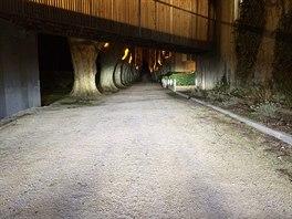 Dosvit laserových světel je až 600 metrů.