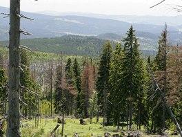 Z Černé hory lze při dobré viditelnosti pozorovat i Alpy