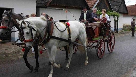 Po Blatnici se můžete projet s koňským spřežením