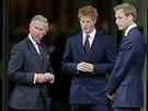 Ryšaví idolové mladých Britek - princové Harry (uprostřed) a William (vpravo).
