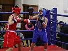 Luk� (v modr�) p�i sv�m prvn�m z�pase v ringu