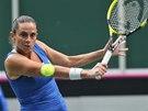 SOUSTŘEDĚNÍ. Roberta Vinciová v semifinále Fed Cupu v souboji proti českým