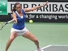 FORHEND. Roberta Vinciová v semifinále Fed Cupu v souboji proti českým