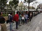 Stovky lidí čekaly ve frontě před Palácem výtvarného umění v Mexiku, aby se...