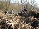 Nejtěžší chvíle prožíval ještě nevzrostlý labyrint při povodni v dubnu 2006.