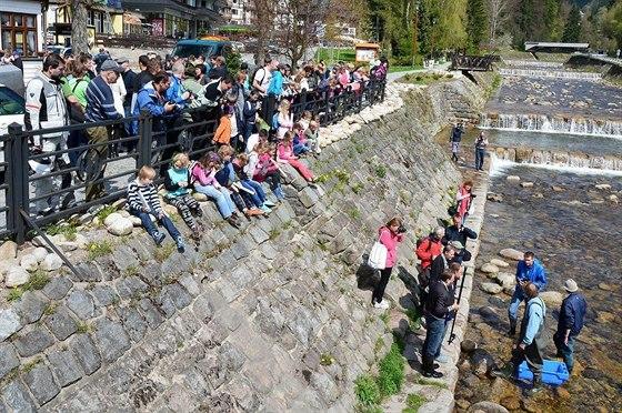 Vypouštění pstruhů vzbudilo zájem špindlerovských občanů a dětí