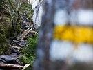 Ve Vlčí rokli v Adršpašsko-teplických skalách vznikají nové chodníky...