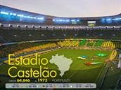 4.:  FIFA World Cup Brazil 2014