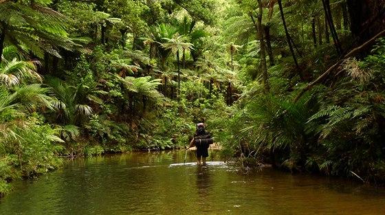 Štědrovečerní brodění řekou v jinak neprůchodné džungli