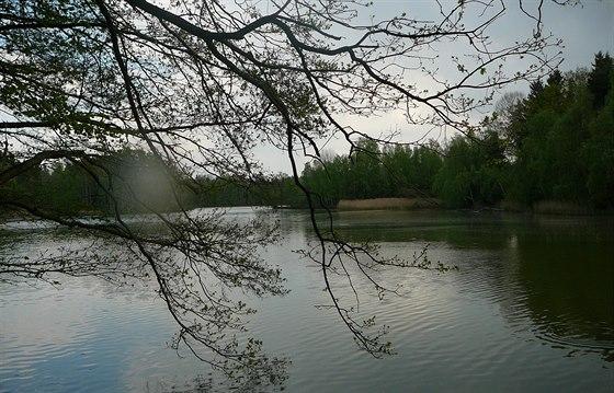 Jiho�esk� rybn�ky maj� �asnou atmosf�ru.