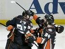 NADŠENÍ. Hokejisté Anaheimu se radují z gólu.