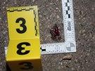 Mladík zůstal po útoku bezvládně ležet na chodníku.