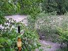 Ro�novsk� Be�va v Ro�nov� pod Radho�t�m v p�tek r�no p�ed dosa�en�m t�et�ho