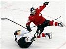 Švýcarský hokejista Kevin Romy (vpravo) padá, na ledě je už německý Daniel...