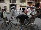 Stoupenci Strany obyčejného člověka odpočívají na rikše.