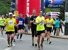 Maraton: z deníku běžce introverta