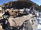 Poz�statky 40 metr� dlouh�ho sauropoda byly odhaleny na poli asi 260 kilometr�